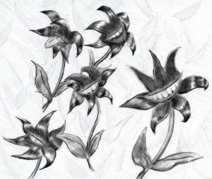 魔獣王国の秘剣 口の花
