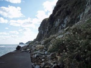 千葉県いすみ市 崖崩れ 海岸