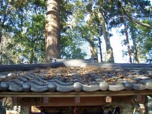 屋根はこのありさま